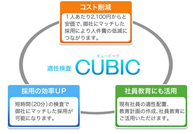 適性検査CUBIC ▲ページトップへ 個人情報について サイトマップ CUBICの特長 料...
